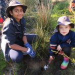 Campbell Primary School Seedling Planting