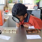 Year 2 Science Campbell Primary School